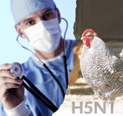Bird Flu Pandemic Planning--Are Your Assets Covered?