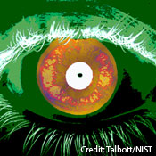 Iris Scans Improve as Means of Identification