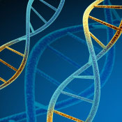 Panel Urges Genomic Privacy Measures